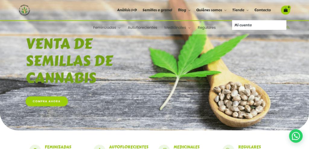 Desarrollo web para empresas 8